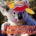 Kermic Koala